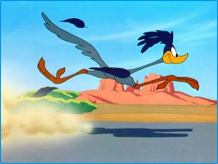 Looney Tunes Image :  Road Runner